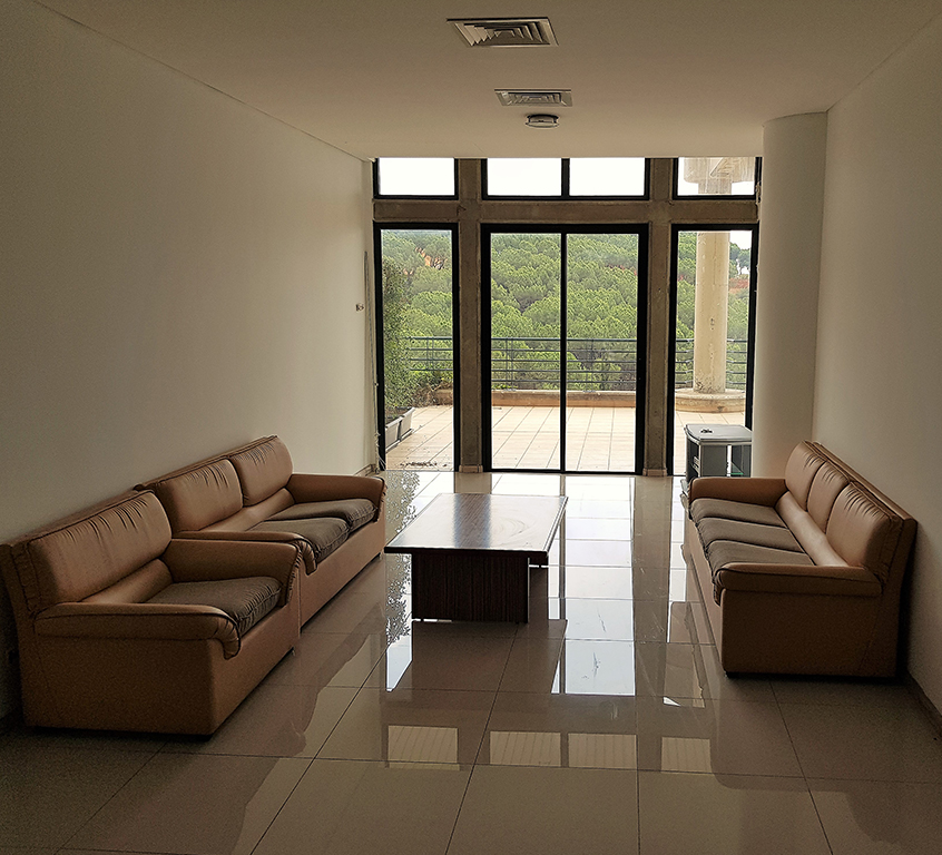 Furnished Studio Apartments: Z Views Furnished Apartments